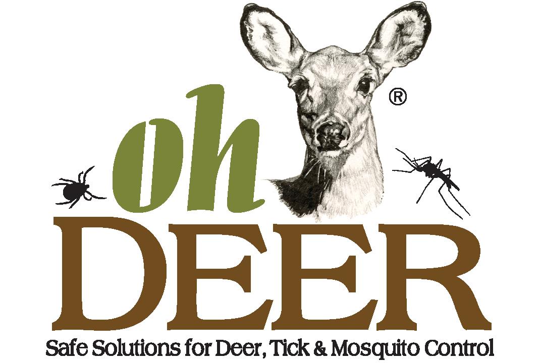 Ohh Deer